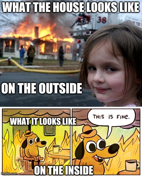 Its weird but probably true |  WHAT THE HOUSE LOOKS LIKE; ON THE OUTSIDE; WHAT IT LOOKS LIKE; ON THE INSIDE | image tagged in so true memes | made w/ Imgflip meme maker