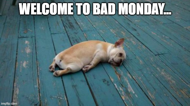 Mondays... |  WELCOME TO BAD MONDAY... | image tagged in tired dog,monday,tired | made w/ Imgflip meme maker