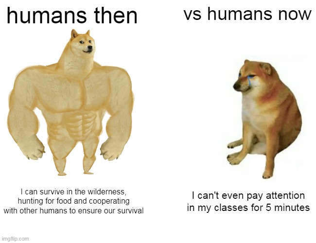 Buff Doge vs. Cheems Meme |  humans then; vs humans now; I can survive in the wilderness, hunting for food and cooperating with other humans to ensure our survival; I can't even pay attention in my classes for 5 minutes | image tagged in memes,buff doge vs cheems,then vs now,cheems,doge,humans | made w/ Imgflip meme maker