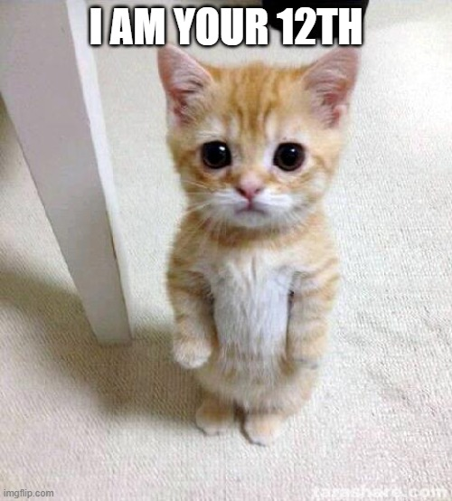Cute Cat |  I AM YOUR 12TH | image tagged in memes,cute cat | made w/ Imgflip meme maker