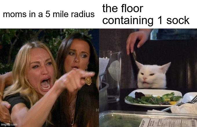 shut up mom!!1! |  moms in a 5 mile radius; the floor containing 1 sock | image tagged in memes,woman yelling at cat | made w/ Imgflip meme maker