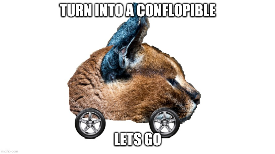 Confloppible |  TURN INTO A CONFLOPIBLE; LETS GO | made w/ Imgflip meme maker