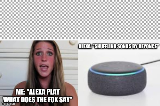 "Seriously?! |  ALEXA: ""SHUFFLING SONGS BY BEYONCE""; ME: ""ALEXA PLAY WHAT DOES THE FOX SAY"" 