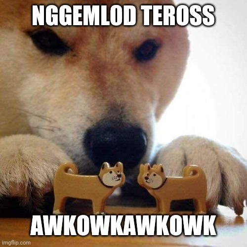 NGGEML0D TEROSS; AWKOWKAWKOWK | image tagged in dog now kiss | made w/ Imgflip meme maker