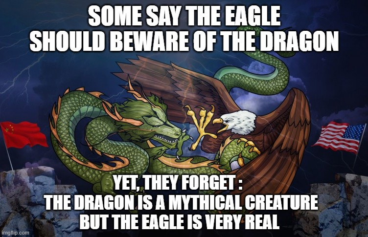 Stay Out of Our Business |  SOME SAY THE EAGLE SHOULD BEWARE OF THE DRAGON; YET, THEY FORGET :   THE DRAGON IS A MYTHICAL CREATURE BUT THE EAGLE IS VERY REAL | image tagged in eagle,china,usa,biden,xi,russia | made w/ Imgflip meme maker