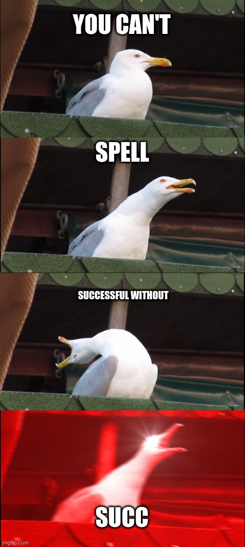 SUCCessful |  YOU CAN'T; SPELL; SUCCESSFUL WITHOUT; SUCC | image tagged in memes,inhaling seagull,stupid,succ,success,haha | made w/ Imgflip meme maker