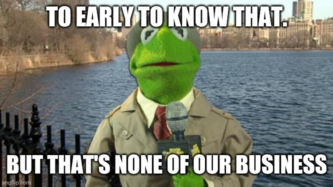 Kermit News Report | TO EARLY TO KNOW THAT. BUT THAT'S NONE OF OUR BUSINESS | image tagged in kermit news report | made w/ Imgflip meme maker