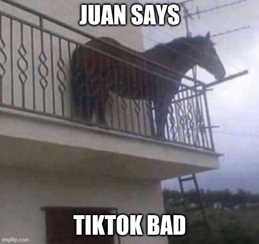 Juan | JUAN SAYS TIKTOK BAD | image tagged in juan | made w/ Imgflip meme maker