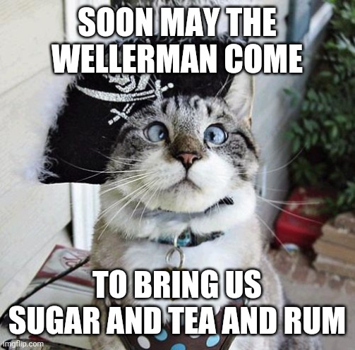 There once was a ship that put to sea... |  SOON MAY THE WELLERMAN COME; TO BRING US SUGAR AND TEA AND RUM | image tagged in memes,spangles,the wellerman,the longest johns,sea shanties,sea shanty | made w/ Imgflip meme maker
