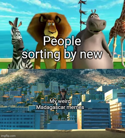People sorting by new; My weird Madagascar memes | image tagged in spam,imgflip,madagascar | made w/ Imgflip meme maker
