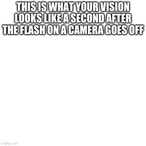 Blank Transparent Square Meme |  THIS IS WHAT YOUR VISION LOOKS LIKE A SECOND AFTER THE FLASH ON A CAMERA GOES OFF | image tagged in memes,blank transparent square,funny,funny memes,fun,imgflip | made w/ Imgflip meme maker