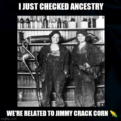 Moonshine Anyone? |  I JUST CHECKED ANCESTRY; WE'RE RELATED TO JIMMY CRACK CORN 🌽 | image tagged in moonshine,jimmy crack corn,hillbillies,women,funny,genealogy memes | made w/ Imgflip meme maker
