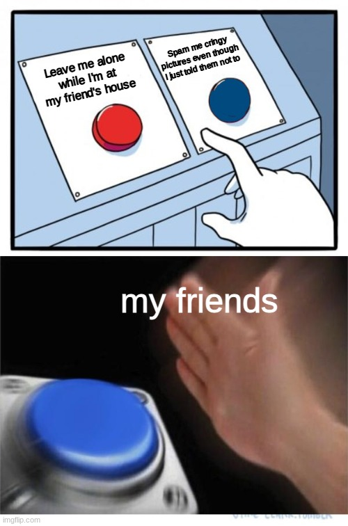 two buttons 1 blue |  Spam me cringy pictures even though I just told them not to; Leave me alone while I'm at my friend's house; my friends | image tagged in two buttons 1 blue,e,oh wow are you actually reading these tags | made w/ Imgflip meme maker
