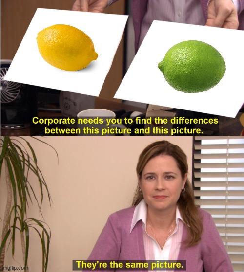 trying to find the difference between a lemon and a lime because they are both sour | image tagged in memes,they're the same picture | made w/ Imgflip meme maker