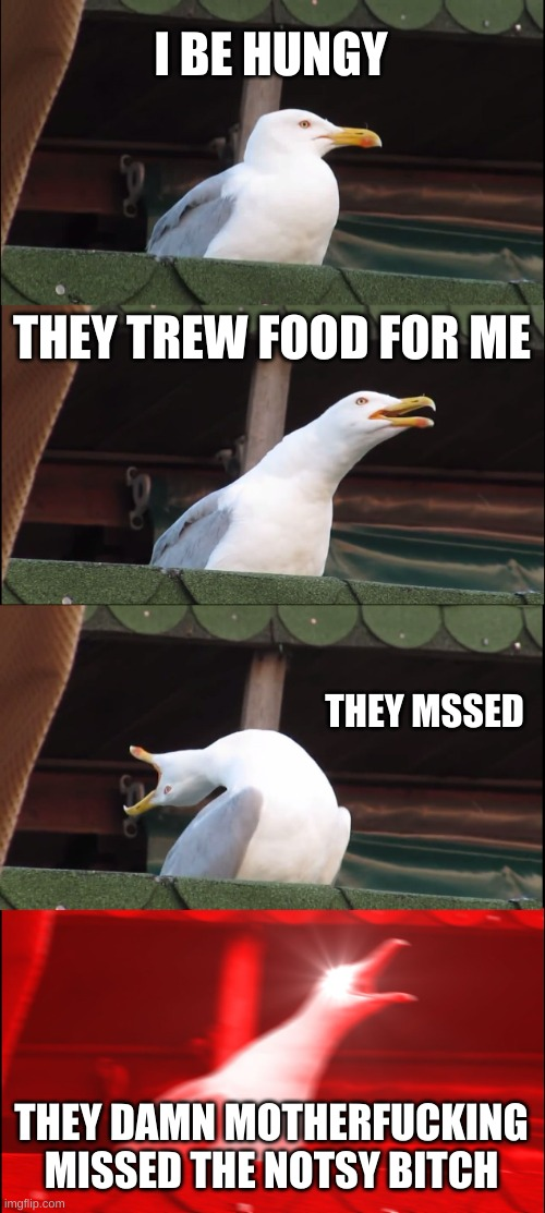 Inhaling Seagull Meme |  I BE HUNGY; THEY TREW FOOD FOR ME; THEY MSSED; THEY DAMN MOTHERFUCKING MISSED THE NOTSY BITCH | image tagged in memes,inhaling seagull | made w/ Imgflip meme maker