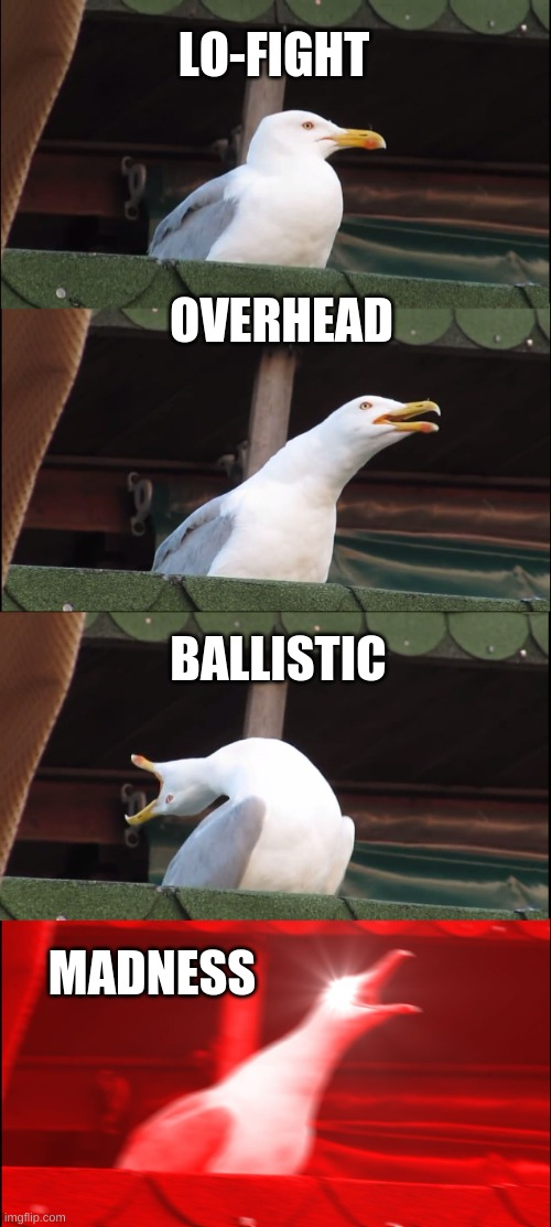 fnf meme |  LO-FIGHT; OVERHEAD; BALLISTIC; MADNESS | image tagged in memes,inhaling seagull | made w/ Imgflip meme maker