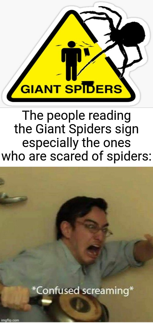 Giant Spiders sign |  The people reading the Giant Spiders sign especially the ones who are scared of spiders: | image tagged in confused screaming,spiders,funny signs,memes,funny,spider | made w/ Imgflip meme maker