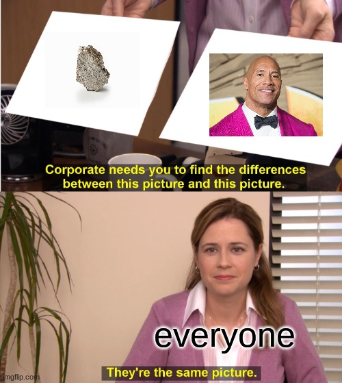 BRUHV |  everyone | image tagged in memes,they're the same picture | made w/ Imgflip meme maker
