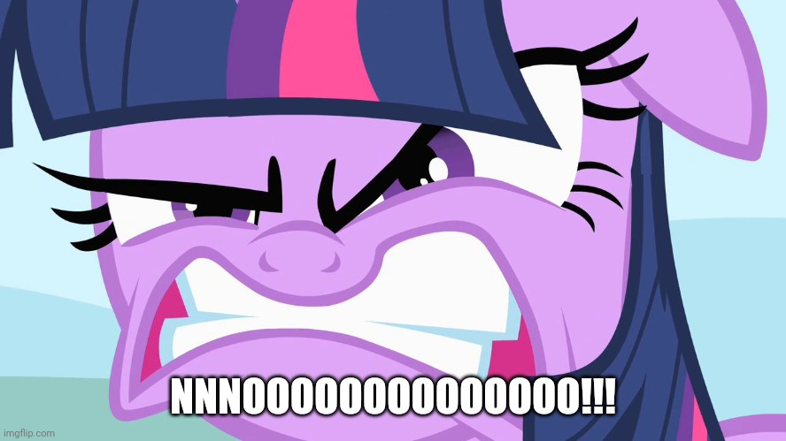 ANGRY Twilight | NNNOOOOOOOOOOOOOO!!! | image tagged in angry twilight | made w/ Imgflip meme maker