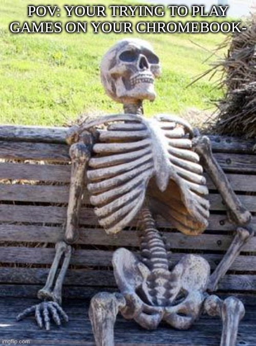Waiting Skeleton |  POV: YOUR TRYING TO PLAY GAMES ON YOUR CHROMEBOOK- | image tagged in memes,waiting skeleton,dead,why,stop reading the tags,stop | made w/ Imgflip meme maker