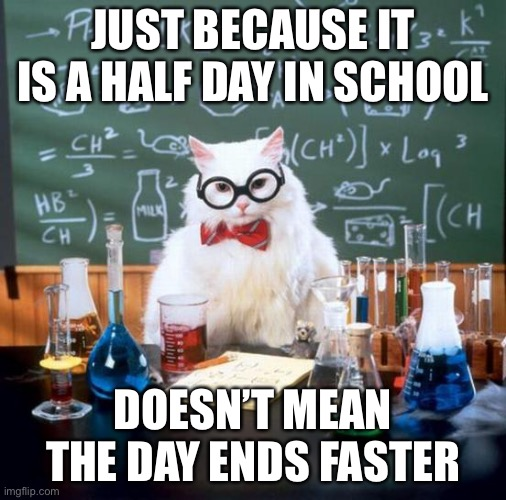 Chemistry Cat |  JUST BECAUSE IT IS A HALF DAY IN SCHOOL; DOESN'T MEAN THE DAY ENDS FASTER | image tagged in memes,chemistry cat | made w/ Imgflip meme maker