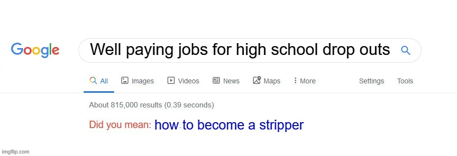 did you mean how to become a stripper |  Well paying jobs for high school drop outs; how to become a stripper | image tagged in did you mean | made w/ Imgflip meme maker