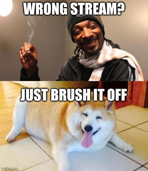 WRONG STREAM? JUST BRUSH IT OFF | image tagged in snoop dogg,thicc doggo | made w/ Imgflip meme maker