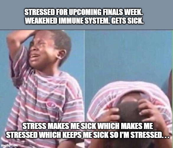 sick cuz of stress |  STRESSED FOR UPCOMING FINALS WEEK.  WEAKENED IMMUNE SYSTEM. GETS SICK. STRESS MAKES ME SICK WHICH MAKES ME STRESSED WHICH KEEPS ME SICK SO I'M STRESSED. . . | image tagged in stress,school,finals,college | made w/ Imgflip meme maker