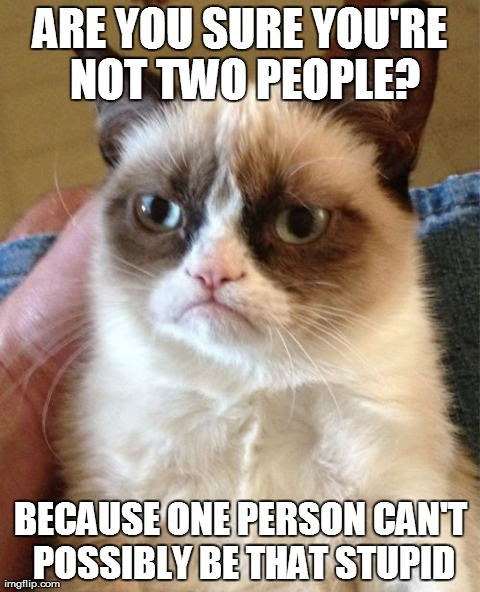 Some people are like that. | ARE YOU SURE YOU'RE NOT TWO PEOPLE? BECAUSE ONE PERSON CAN'T POSSIBLY BE THAT STUPID | image tagged in memes,grumpy cat | made w/ Imgflip meme maker