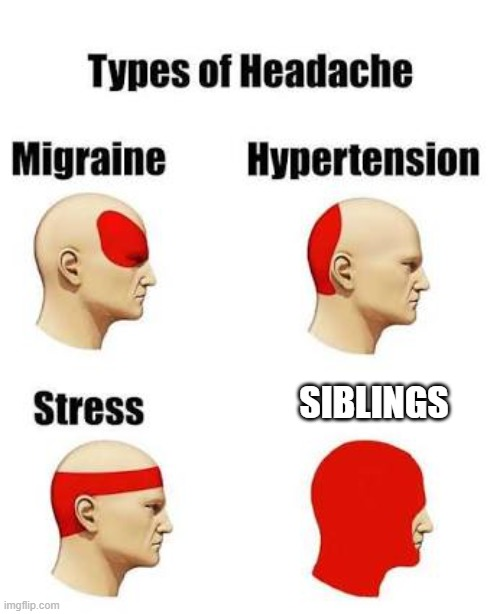 Headaches |  SIBLINGS | image tagged in headaches | made w/ Imgflip meme maker