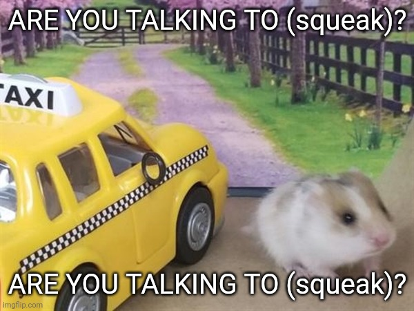 Hampster Robert De Niro |  ARE YOU TALKING TO (squeak)? ARE YOU TALKING TO (squeak)? | image tagged in funny,cute,famous quotes | made w/ Imgflip meme maker