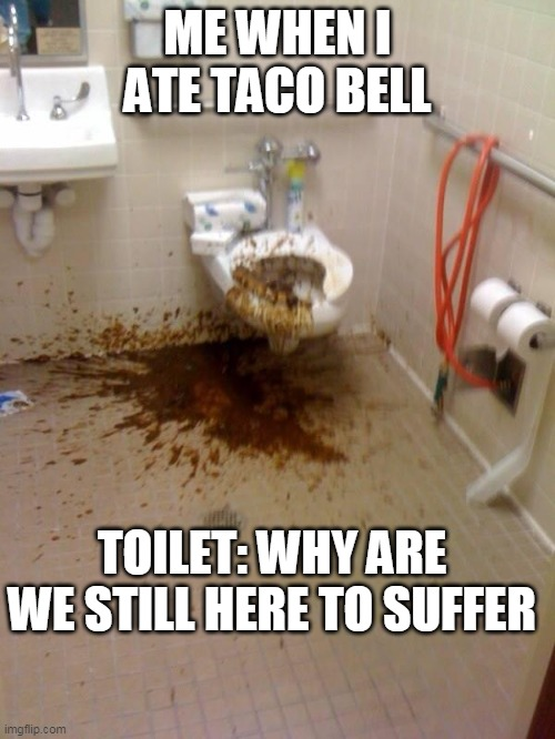 Girls poop too |  ME WHEN I ATE TACO BELL; TOILET: WHY ARE WE STILL HERE TO SUFFER | image tagged in girls poop too | made w/ Imgflip meme maker