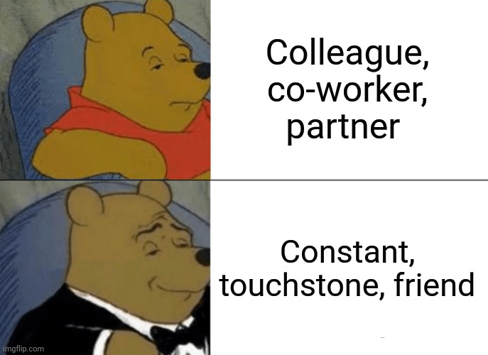 Mulder and Scully |  Colleague, co-worker, partner; Constant, touchstone, friend | image tagged in memes,tuxedo winnie the pooh,xfiles,fox mulder the x files | made w/ Imgflip meme maker