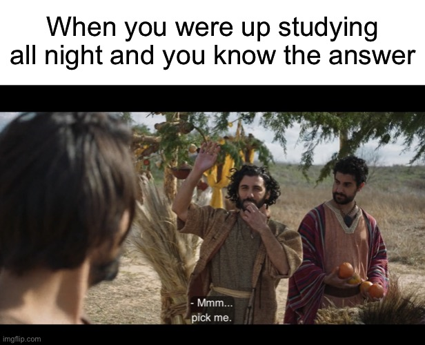 When you were up studying all night and you know the answer | image tagged in blank white template,the chosen | made w/ Imgflip meme maker