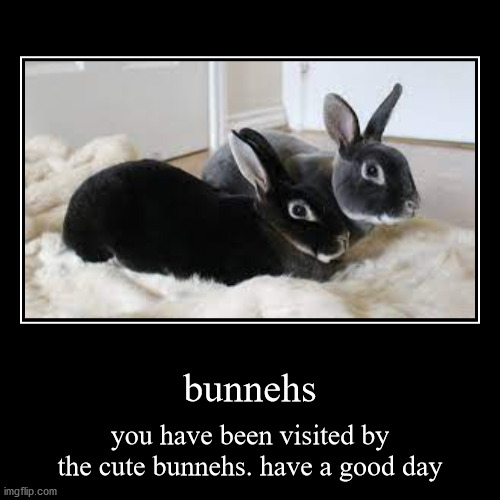 bunnehs | you have been visited by the cute bunnehs. have a good day | image tagged in funny,demotivationals | made w/ Imgflip demotivational maker
