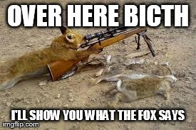 OVER HERE BICTH I'LL SHOW YOU WHAT THE FOX SAYS | image tagged in funny,what does the fox say | made w/ Imgflip meme maker