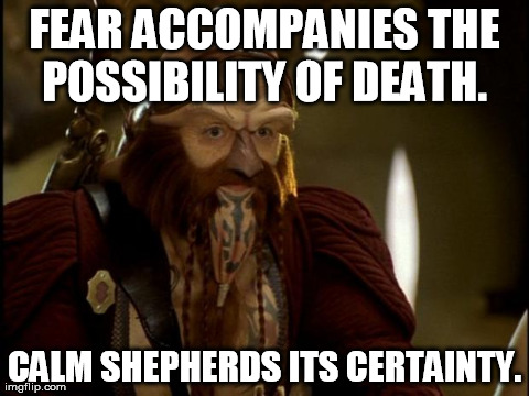 FEAR ACCOMPANIES THE POSSIBILITY OF DEATH.  CALM SHEPHERDS ITS CERTAINTY. | image tagged in dargo | made w/ Imgflip meme maker