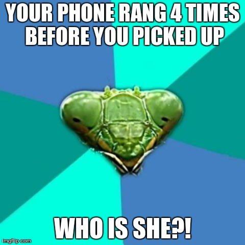 Crazy Girlfriend Praying Mantis | YOUR PHONE RANG 4 TIMES BEFORE YOU PICKED UP WHO IS SHE?! | image tagged in memes,crazy girlfriend praying mantis | made w/ Imgflip meme maker