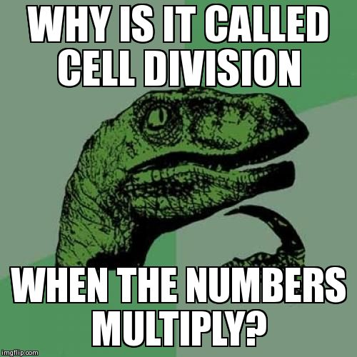 Philosoraptor Meme | WHY IS IT CALLED CELL DIVISION WHEN THE NUMBERS MULTIPLY? | image tagged in memes,philosoraptor | made w/ Imgflip meme maker