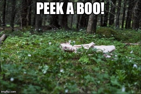 PEEK A BOO! | image tagged in AdviceAnimals | made w/ Imgflip meme maker