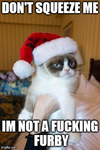 Grumpy Cat Christmas | DON'T SQUEEZE ME IM NOT A F**KING FURBY | image tagged in memes,grumpy cat | made w/ Imgflip meme maker