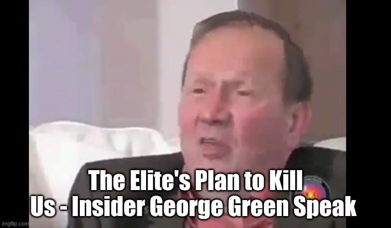 The Elite's Plan to Kill Us - Insider George Green Speaks  (Video)