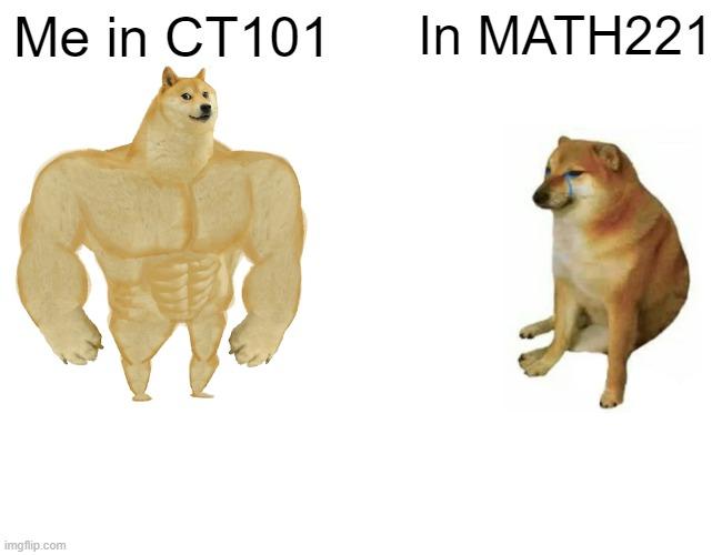 Buff Doge vs. Cheems Meme | Me in CT101; In MATH221 | image tagged in memes,buff doge vs cheems | made w/ Imgflip meme maker