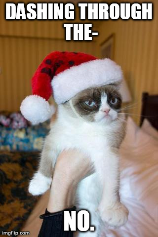 Grumpy Cat Christmas | DASHING THROUGH THE- NO. | image tagged in memes,grumpy cat | made w/ Imgflip meme maker
