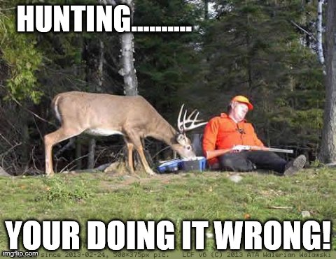 5qb51 image tagged in funny,hunting,animals,deer imgflip,Funny Deer Memes