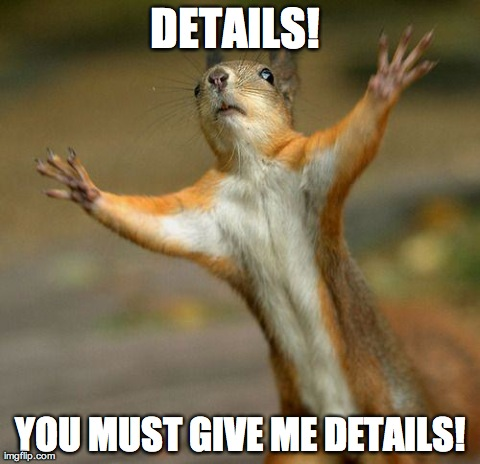 DETAILS!  YOU MUST GIVE ME DETAILS! | image tagged in off topic squirrel | made w/ Imgflip meme maker