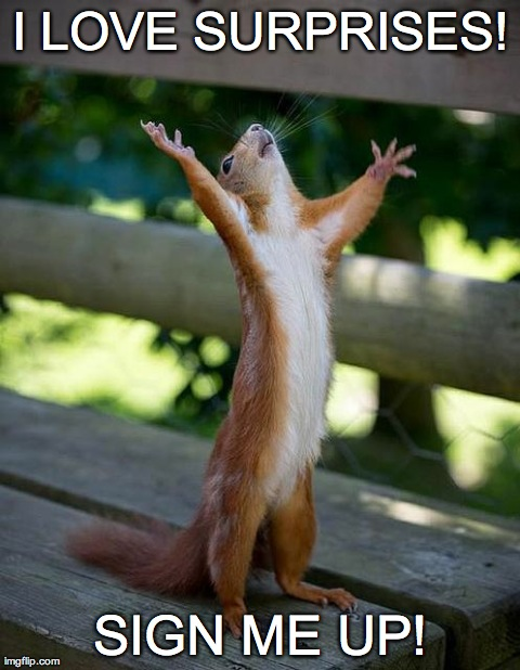 Insane Squirrel | I LOVE SURPRISES! SIGN ME UP! | image tagged in insane squirrel | made w/ Imgflip meme maker