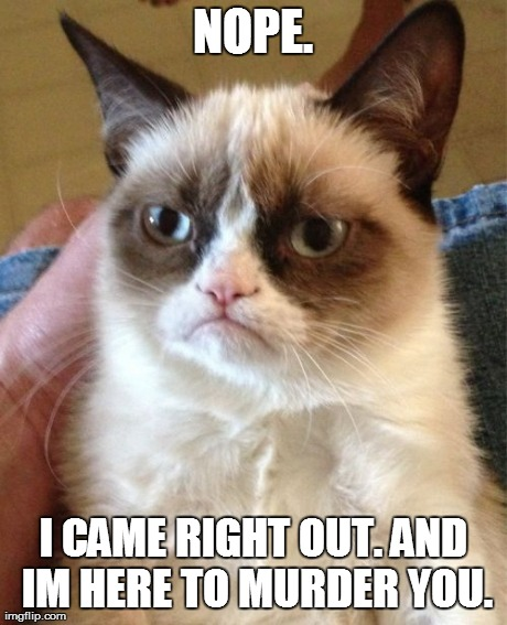 Grumpy Cat Meme | NOPE. I CAME RIGHT OUT. AND IM HERE TO MURDER YOU. | image tagged in memes,grumpy cat | made w/ Imgflip meme maker