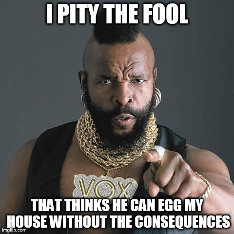 Mr T Pity The Fool | I PITY THE FOOL THAT THINKS HE CAN EGG MY HOUSE WITHOUT THE CONSEQUENCES | image tagged in memes,mr t pity the fool | made w/ Imgflip meme maker