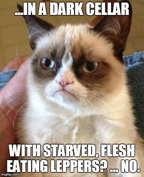 Grumpy Cat Meme | ...IN A DARK CELLAR WITH STARVED, FLESH EATING LEPPERS? ... NO. | image tagged in memes,grumpy cat | made w/ Imgflip meme maker